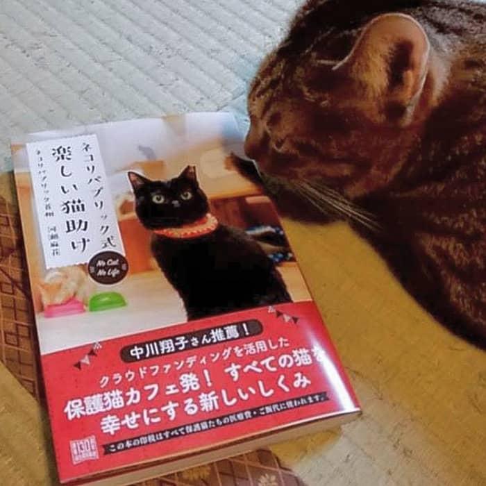 ネコリパブリック式楽しい猫助け(本)