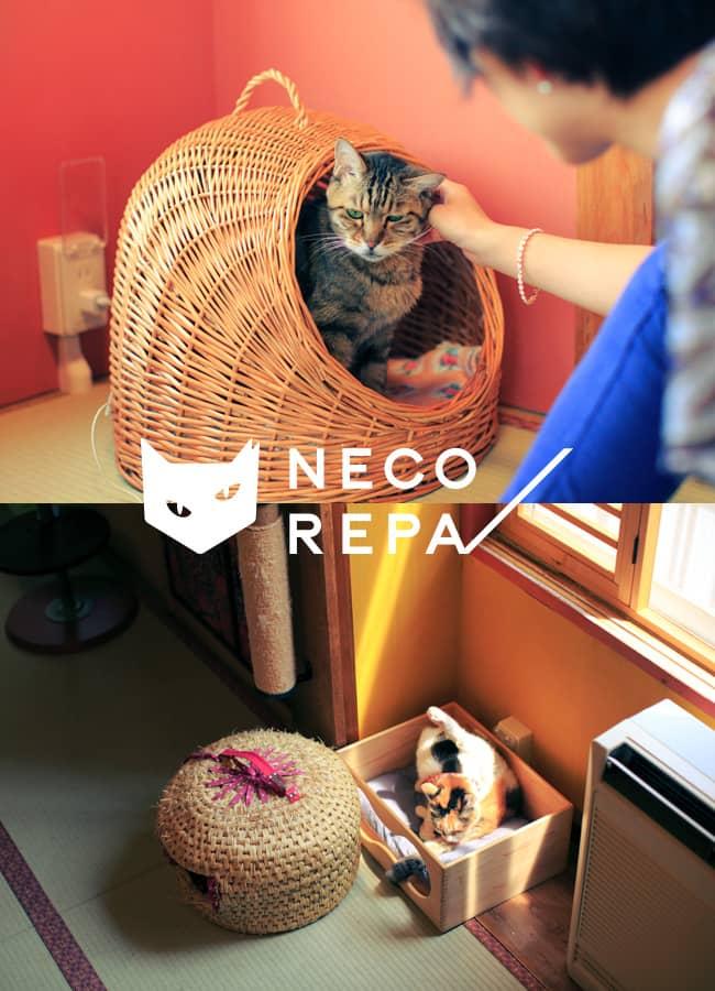 NECOREPA/ブランドイメージ