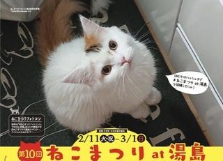 第10回 ねこまつりat湯島開催! 2/11(火祝)〜3/1(日)