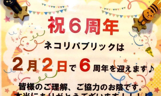 2月2日はネコリパ建国6周年!
