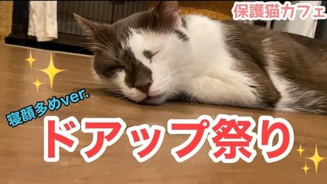 第二回ドアップ祭り~寝顔編~
