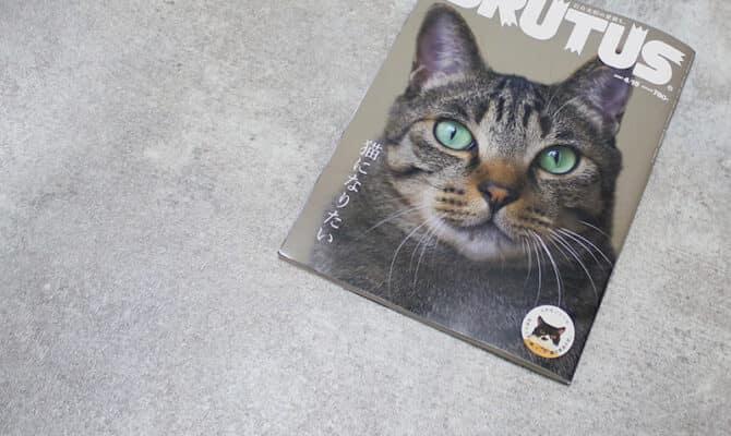 「BRUTUS(4月号:猫になりたい)」にて「ねこじゃらすり」「SABI CARD CASE」を取り上げていただきました。