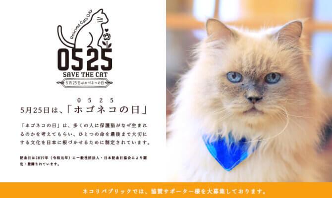 5月25日ホゴネコの日 指1本でできる猫助けキャンペーン開催中 6月30日まで