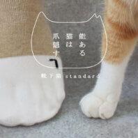 自分の足も猫足になれるソックス 靴下猫バージョン新発売ニャ!「能ある猫は、爪隠す」