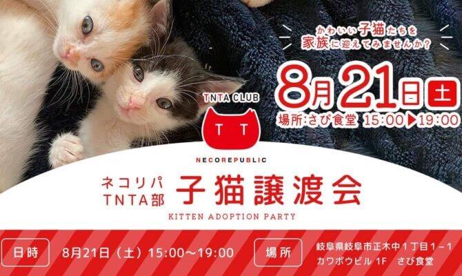 8月21日土曜日は 子猫譲渡会